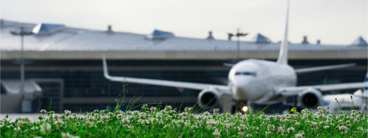 Blurred airplane on the runway, with greenery in the foreground.
