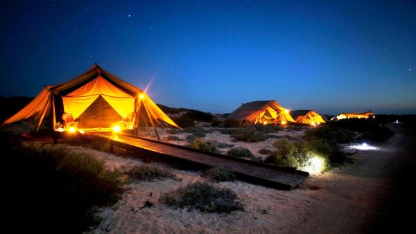 Sal Salis Wilderness Tents at night