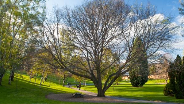 Royal Tasmanian Botanical Garden, Tasmania