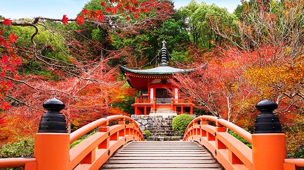 Daigoji Temple Bridge in Kyoto