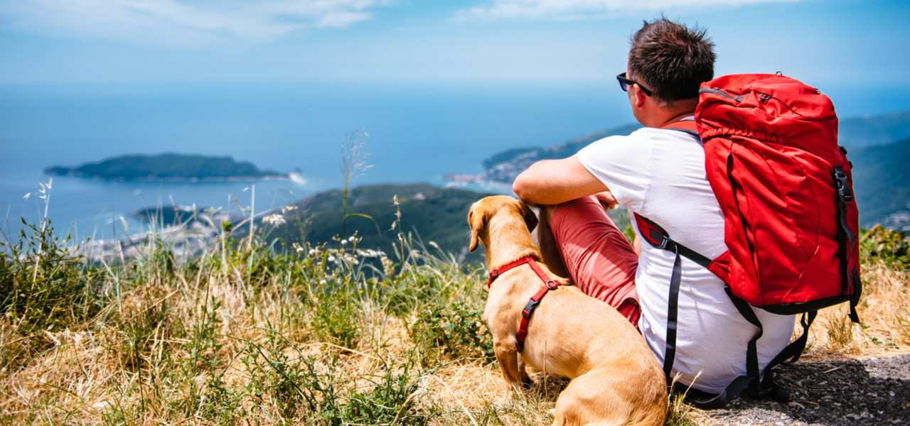 Man with red backpack with his dog looking at view on top of a mountain