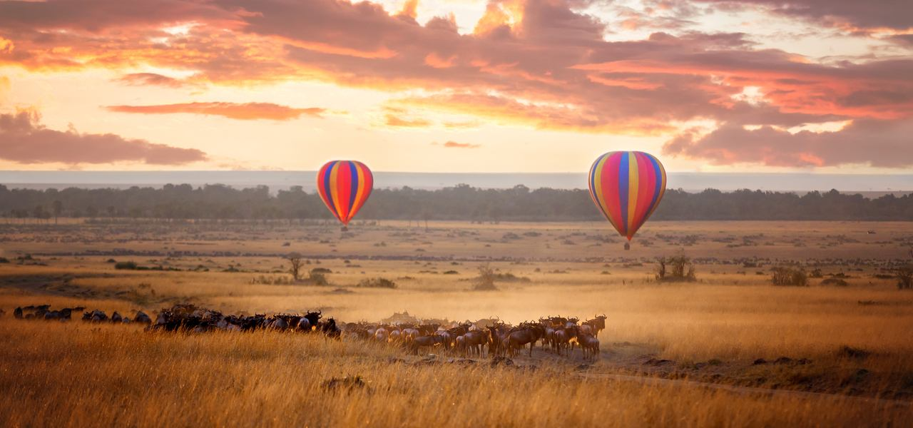 Hot air balloons at sunset over herds of animals during the annual great migration