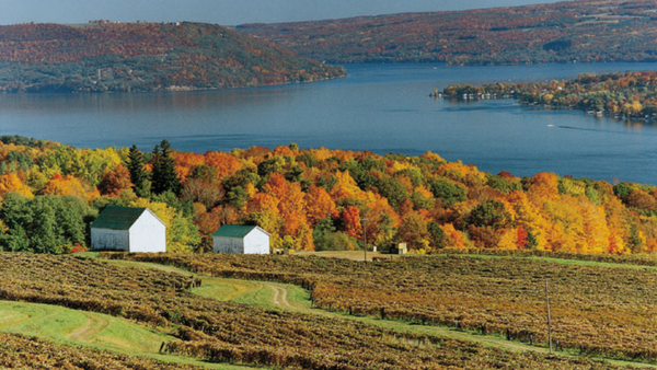 Charter a private jet to Finger Lakes, New York