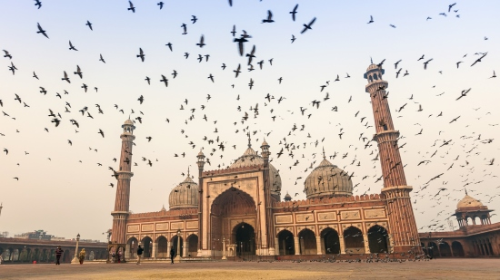 India - Ufficio di Nuova Delhi