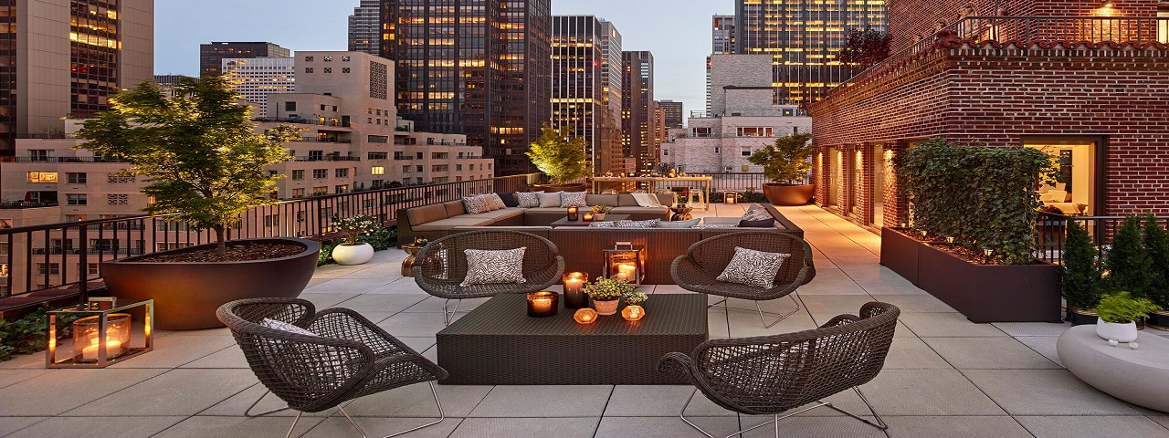 New York's top pet-friendly venues - Quin Hotel