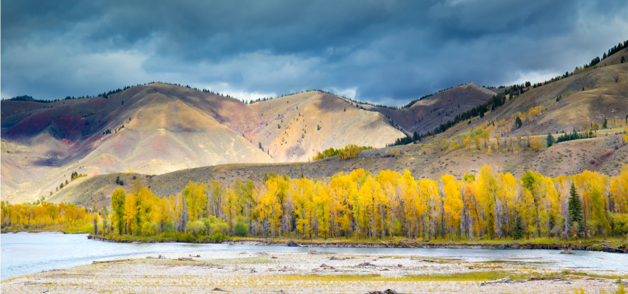 The snake River Valley in Idaho in Autumn with golden colors