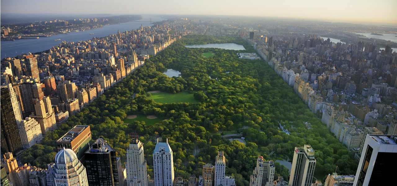 An aerial view of Central Park, New York at dawn