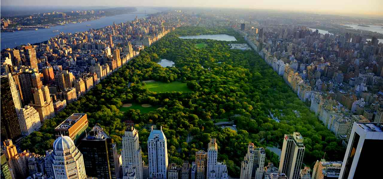 Aerial view of Central Park, Manhattan, New York, USA