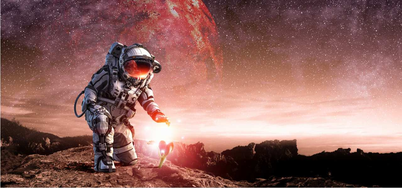 An astronaut kneels down to inspect a plant on an alien planet