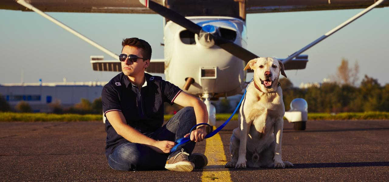 Dog and owner on airport tarmac in front of a private jet