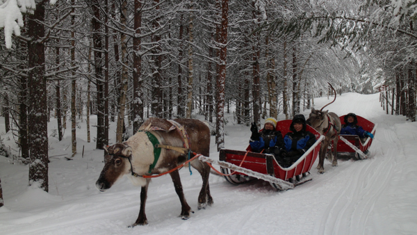 Hire a private jet and book The Christmas Week Adventure Package in Lapland