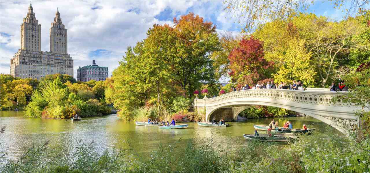 New York's Central Park in fall