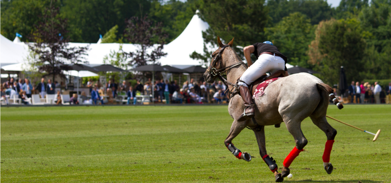 Polo Marquee