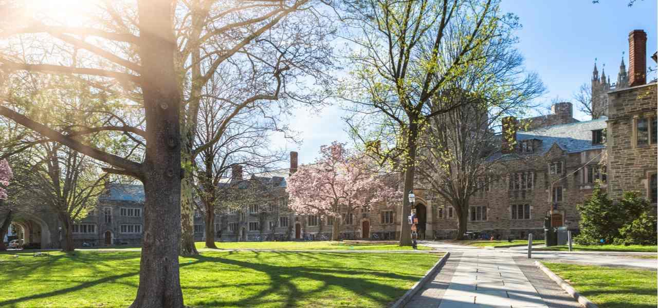 Walkway through princeton university, USA