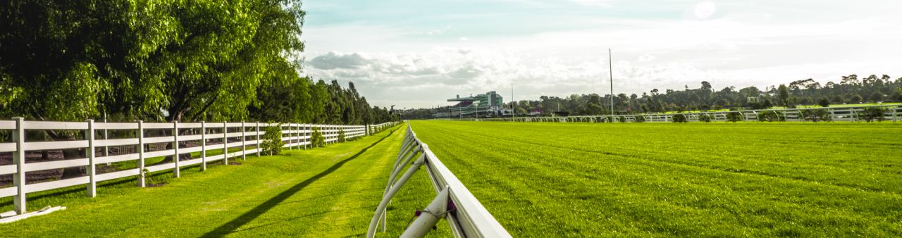 A view from the running rail of the horse racecourse field in Melbourne