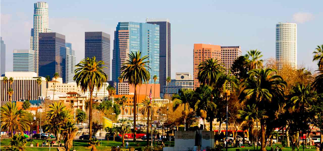 View of downtown Los Angeles with palm trees and skyscrapers