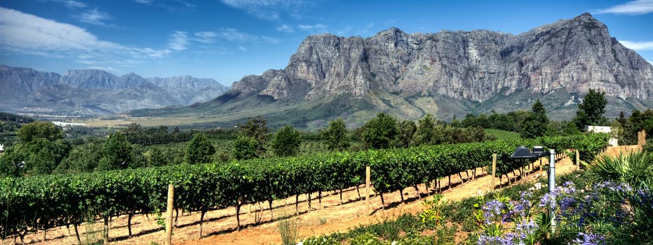Аренда частного самолета и чартерные перелеты в ЮАР