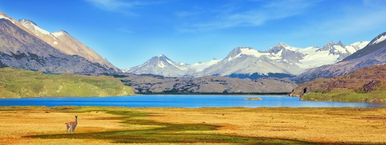 Alquiler de avión privado que le lleve a Argentina